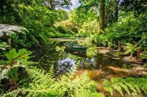 デスクトップの壁紙、、イングランド、公園、池、ボート、Ramster Gardens Surrey、自然