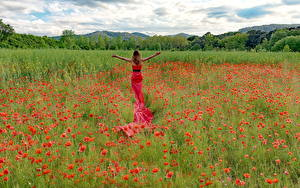 Fotos Felder Mohnblumen Kleid Blumen Mädchens Natur