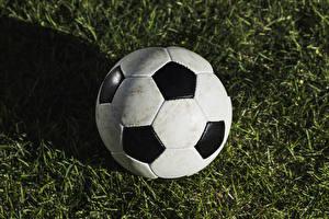 Fotos Fußball Ball Gras