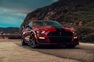Fotos Ford Rot Vorne Strips Dunkelrote Mustang Shelby GT500 2019 Autos
