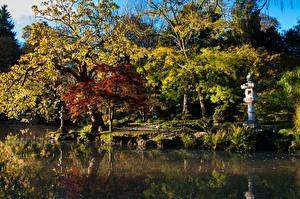 Bilder Frankreich Park Teich Herbst Bäume  Natur