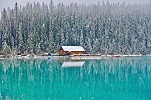 Bilder Gebäude Wälder See Kanada Park Schnee Banff Lake Louise, Alberta