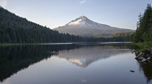 Bilder See Gebirge Wälder Vereinigte Staaten Steine Spiegelt Vulkane Mount Hood, Trillium Lake, Oregon Natur