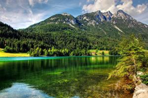 Bilder Gebirge Wälder See Österreich Landschaftsfotografie  Natur
