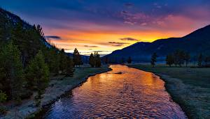 Picture Park USA Sunrise and sunset Mountain Forests Rivers Landscape photography Yellowstone Wyoming, Yellowstone River
