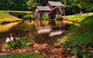 Bilder Fluss Gänse Gras Wassermühle Natur
