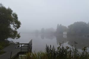 Fotos Flusse Morgen Bootssteg Finnland Nebel Gras River Aura Natur