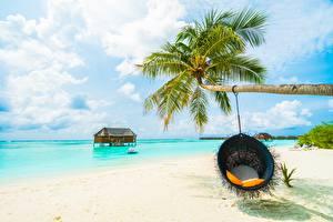 Hintergrundbilder Meer Tropen Palmengewächse Sessel Strand Natur