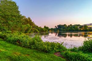 Fotos & Bilder USA See Strauch Bäume Gras Columbia Maryland Natur