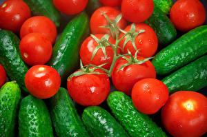Bilder Gemüse Tomaten Gurke Hautnah das Essen