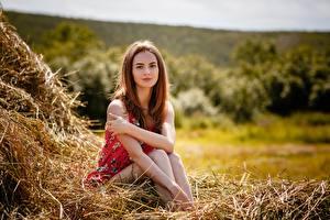 Fonds d'écran Aux cheveux bruns Assise Foin Main Alexey Gilev jeune femme