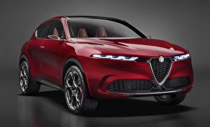 Hintergrundbilder Alfa Romeo Grauer Hintergrund Rot 2019 Tonale Concept auto