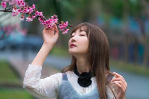 Fonds d'écran Asiatique Arrière-plan flou Branche Cheveux Visage Mignon Aux cheveux bruns jeune femme