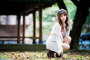 Fonds d'écran Asiatique Regard fixé Bokeh Feuille Aux cheveux bruns Filles
