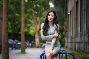 Pictures Asian Smile Hands Brunette girl Sweet Sitting Skirt Bokeh Girls