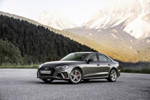 Fotos Audi Grau Metallisch 2019 A4 45 TFSI quattro S line Worldwide Autos