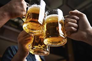 Fotos Bier Becher Drei 3 Hand Lebensmittel