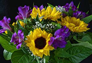 Fotos Blumensträuße Inkalilien Sonnenblumen Blumen