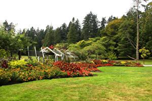 Fotos Kanada Park Vancouver Strauch Rasen Bäume Stanley Park Natur