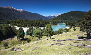 Fotos Chile Gebirge Wald Fluss Bäume Patagonia Natur