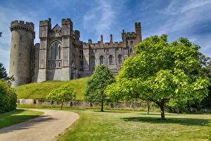 Hintergrundbilder England Burg Bäume Rasen Arundel Castle and Gardens Städte