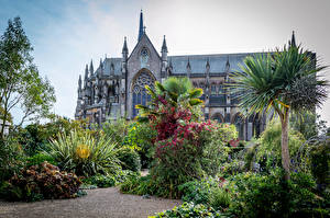 Photo England Castles Gardens Shrubs Palm trees Arundel Castle and Gardens Cities