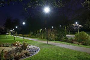 Fotos England Parks Nacht Straßenlaterne Rasen Strauch Arboretum Walsall
