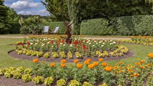 Fotos England Parks Sammetblume Rasen Strauch Hughenden Manor