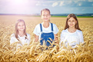 Pictures Fields Ear botany Little girls Three 3 child