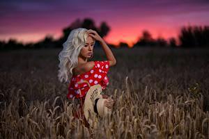 Bilder Felder Blond Mädchen Der Hut Model Margo Dmitry Medved