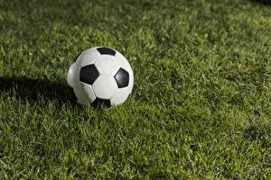 Hintergrundbilder Fußball Gras Ball