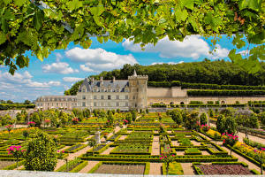 Picture France Castles Gardens Grapes Design Bush Branches Chateau and Gardens of Villandry Nature Cities