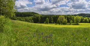 Fotos Deutschland Wald Acker Wolke Gruibingen Natur