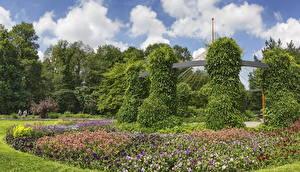桌面壁纸,,德国,庭園,碧冬茄属,设计,灌木,Botanischer Garten Augsburg,大自然