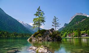 Image Germany Mountain Lake Bavaria Cliff Trees Berchtesgadener Land Nature