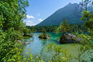 Pictures Germany Mountain Lake Forest Stone Bavaria Branches Nature