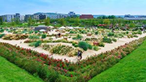桌面壁纸,,德国,公园,设计,灌木,草,Heilbronn,大自然