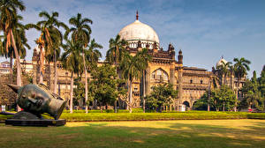 Wallpapers India Sculptures Palace Museums Palm trees Lawn Prince of Wales Museum Mumbai