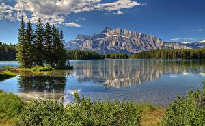Images Mountains Lake Park Canada Spruce canadian Rocky mountains Nature