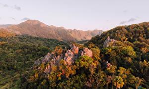 Bilder Philippinen Gebirge Wälder Igbaklag Cave Antique