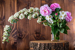 Fotos Rosen Blumensträuße Lenzrosen Bretter Mauer Ast Blumen