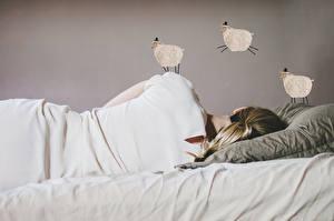 Picture Sheep Sleep Lying down Pillows Girls
