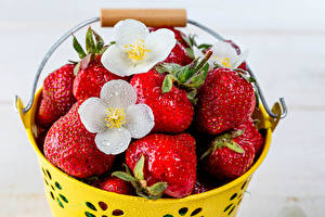 Fotos Erdbeeren Eimer das Essen