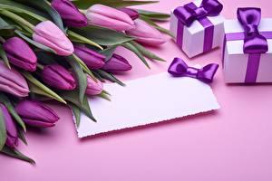 Fotos Tulpen Vorlage Grußkarte Violett Geschenke Blüte