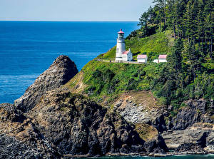 Bilder Vereinigte Staaten Küste Leuchtturm Felsen Fichten Roosevelt Beach Oregon