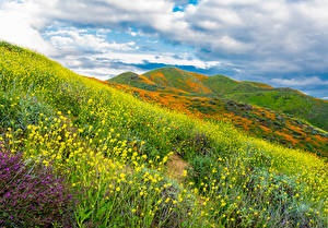 Image USA Fields California Hill Grass Moss Walker Canyon in Lake Elsinore Nature