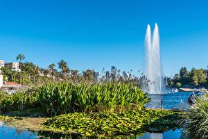 Fotos Vereinigte Staaten Parks Springbrunnen Los Angeles Kalifornien Echo Park Lake