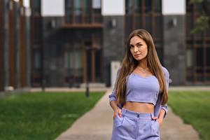 Fonds d'écran Cheveux Aux cheveux bruns Mannequinat Voir Bokeh Viktoria, Dmitry Medved jeunes femmes
