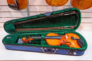 Bilder Violine