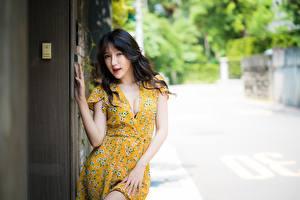 Fotos Asiaten Kleid Dekolletee Bokeh Brünette junge frau